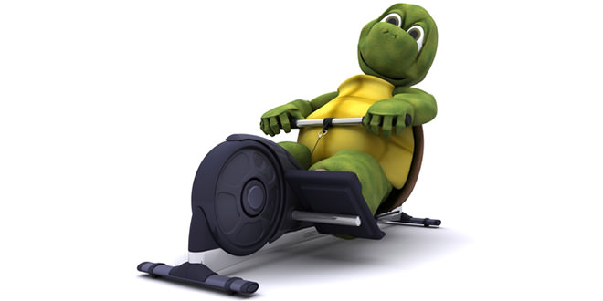 Rowing Machines as Home Gym Equipment